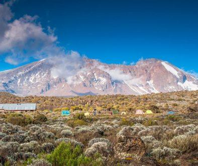le haut du kilimanjaro