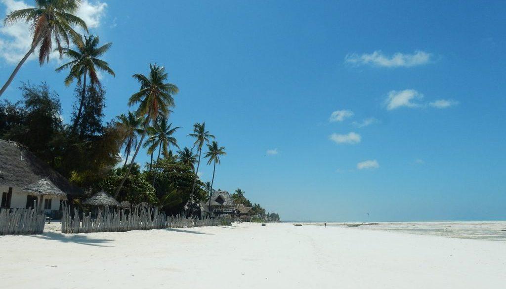 Séjour à Zanzibar : Visiter Unguja, l'île principale