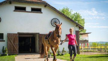 pension pour chevaux à Sainte-Maries-de-la-Mer.