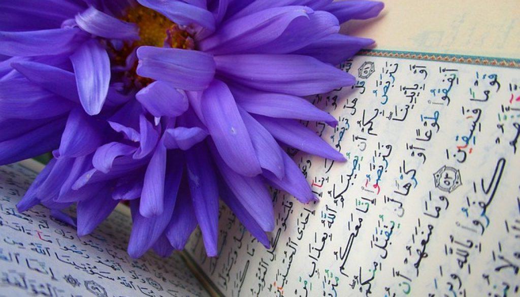 https://www.inter-arabetraduction.com/